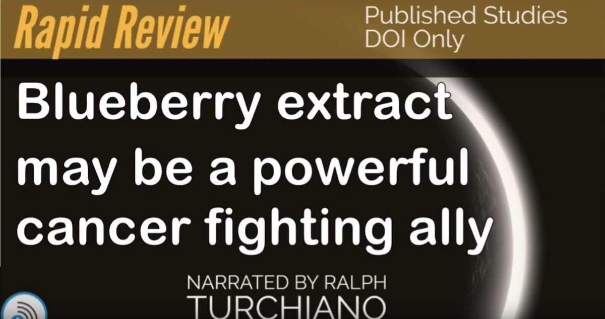 Berry gives cancer therapy aboost
