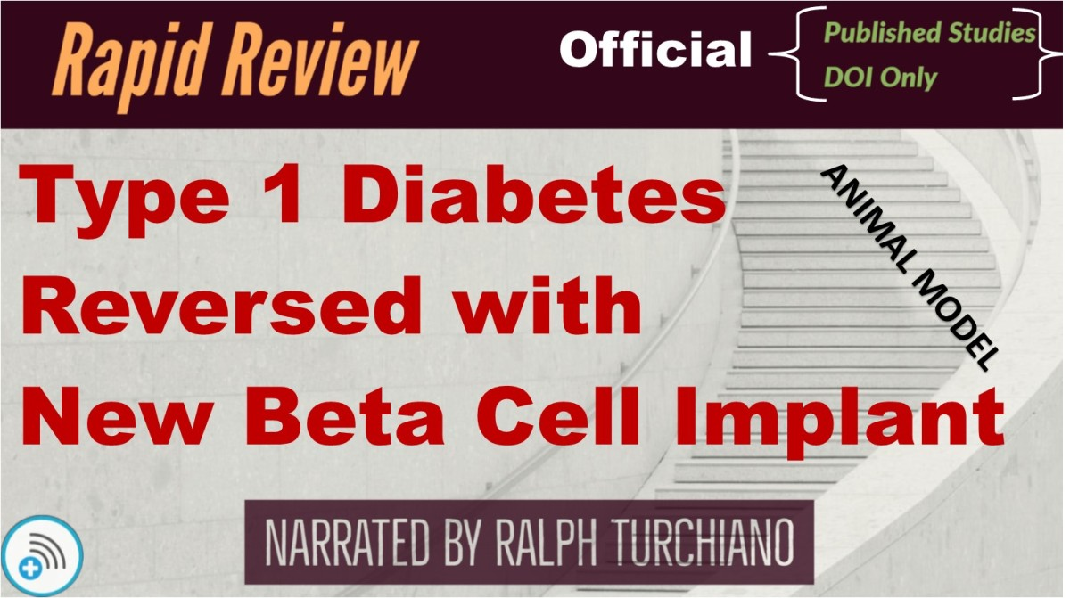 Type 1 Diabetes Reversed with New Beta Cell Implant (Animal Model)
